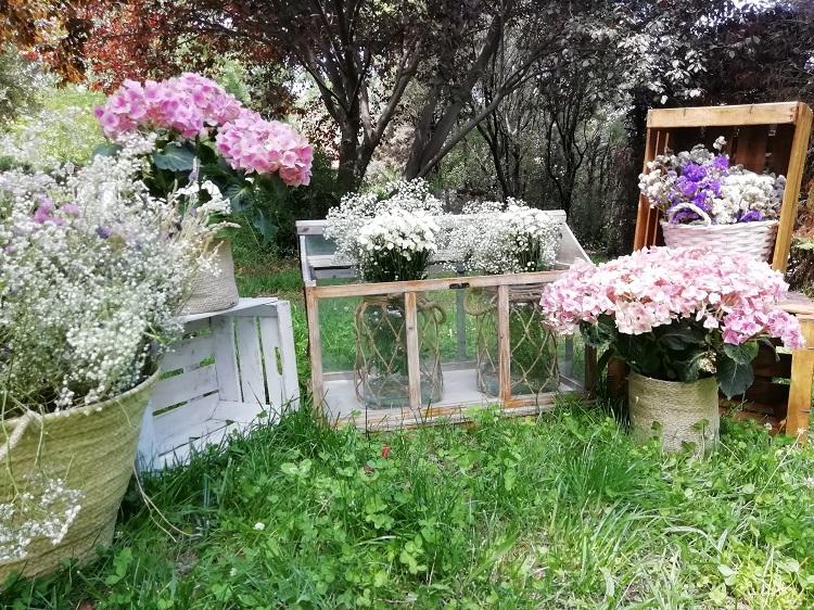Decoración con invernadero y hortensias